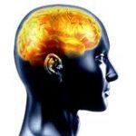 ¿Qué es el yoga del súper cerebro?