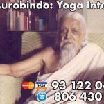 ¿Qué es el Yoga Integral?