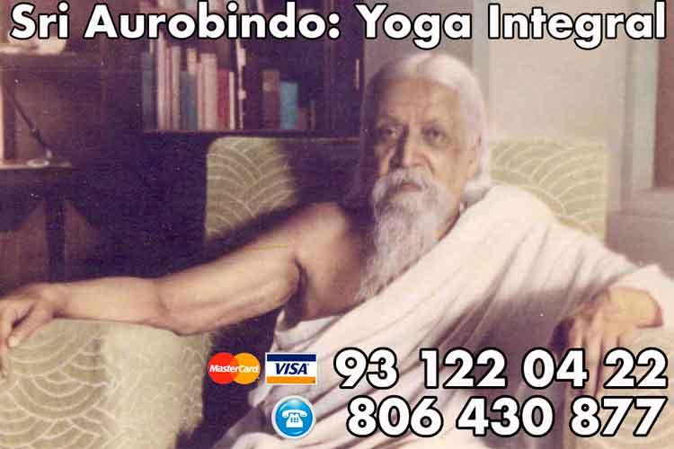 Yoga Integral Sri Aurobindo