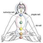 ¿Qué realmente es el yoga?