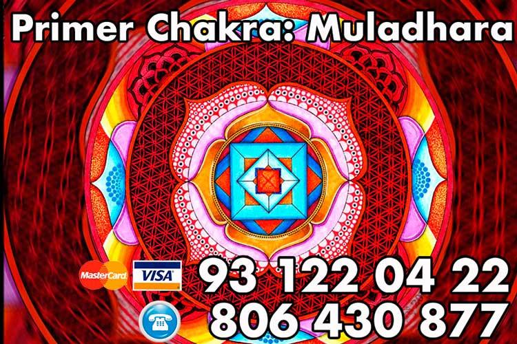 el primer chakra (muladhara)