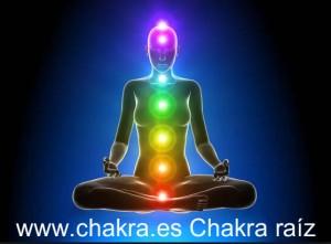 Caracteristicas Chakra Raiz