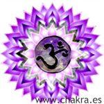 El Chakra Coronario: Sahasrara
