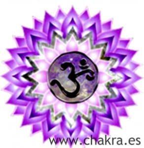 El Chakra Coronario Sahasrara