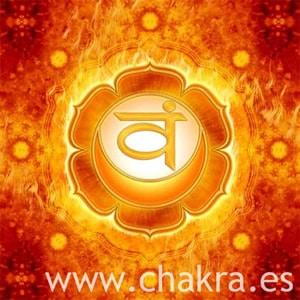 El Chakra Espl+®nico Swadhisthana