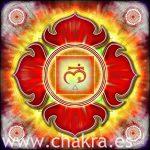 El Chakra fundamental: Muladhara