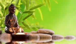 Sanación mediante la medicina tradicional hindú